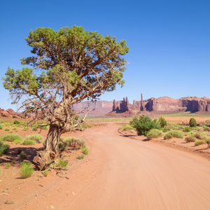 Wandbild MONUMENT VALLEY | Valley Drive