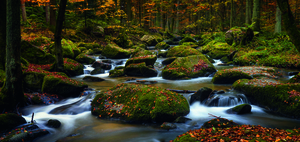 Wandbild autumn waters by Norbert Maier,1x.com